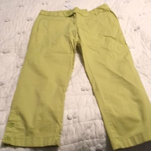 Brand new cropped pants from Loft